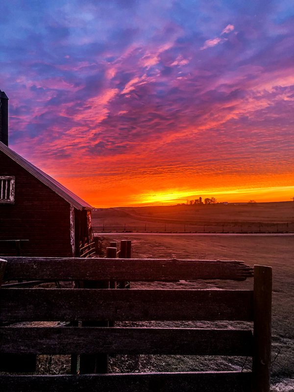 Sunrise on the Ranch thumbnail