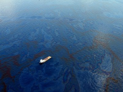 Microbes were used in the cleanup of the Deepwater Horizon oil spill.