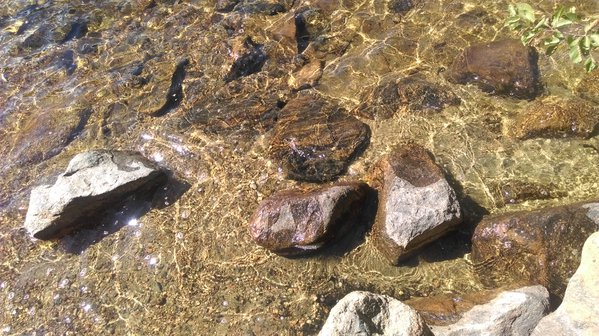 Clear water of bear lake from Rocky mountain thumbnail