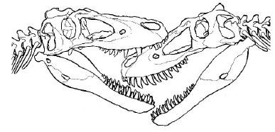 20110520083155jane-tyrannosaur-face-bite.jpg
