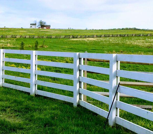 Fences Divide thumbnail