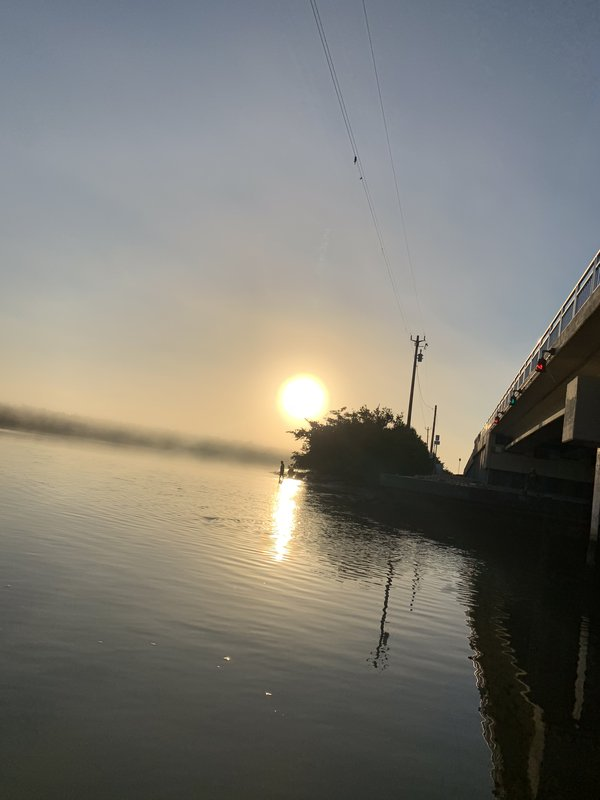 Morning Sun thumbnail