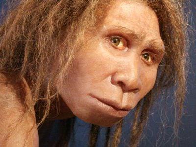 An artist's reconstruction of Homo georgicus