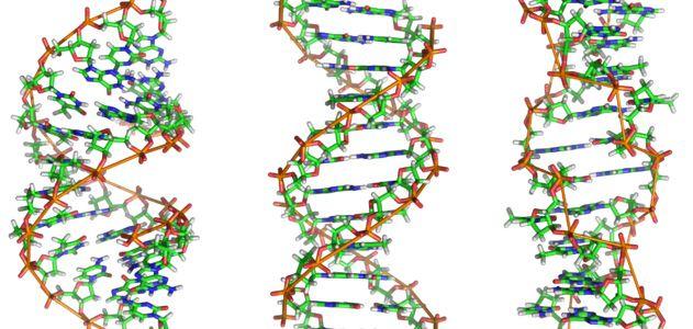 DNA-hero-631.jpg