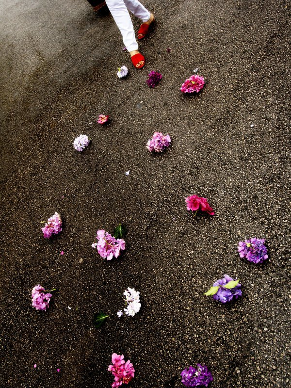 Flowers in the street thumbnail