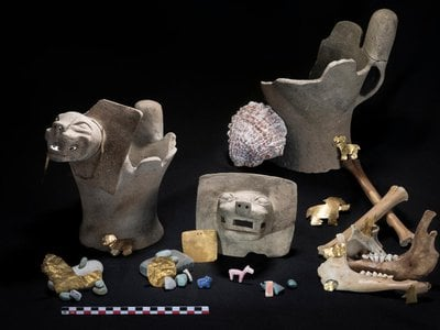 Typical Tiwanaku-period offerings at Khoa Reef in Lake Titicaca, Bolivia, including stone carvings and sacrificial animal bones.