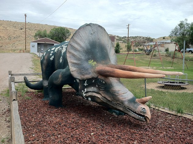 Long-snouted Triceratops