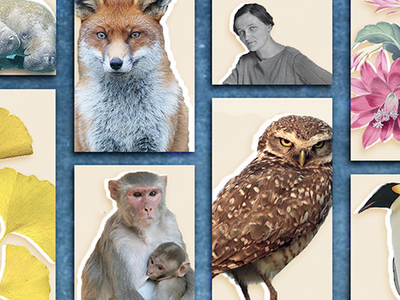 Monitor local animal populations, identify plants, transcribe women astronomers' notes, bird-watch and more.