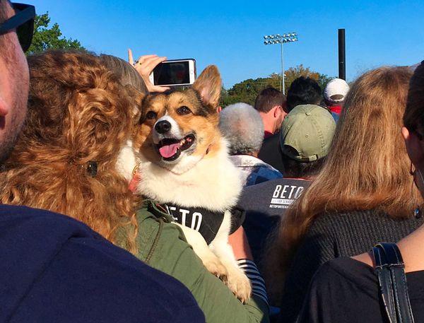 Beto Rally thumbnail
