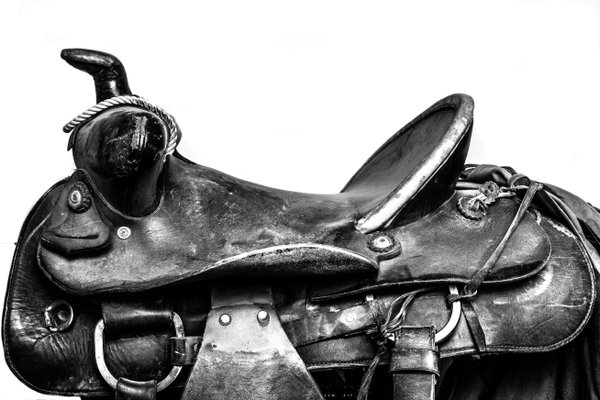 Dad's Saddle.  thumbnail