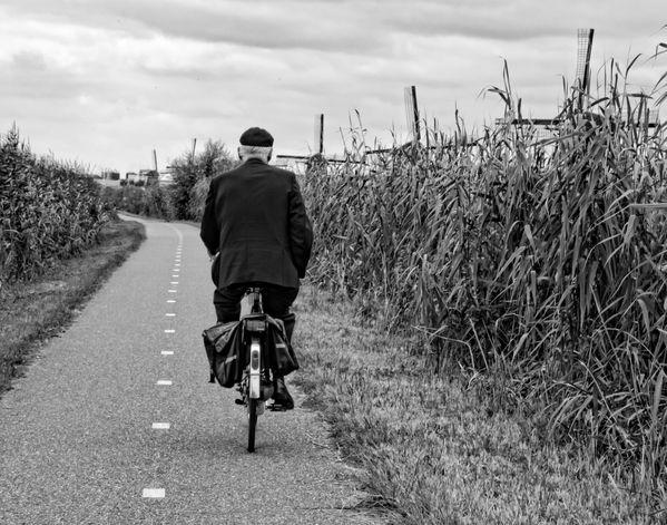 Biking the Dikes thumbnail