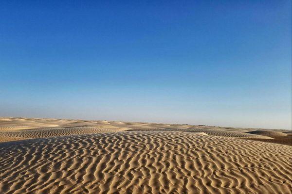 The Sahara desert thumbnail