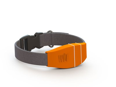WÜF's dog collar keeps owners connected to their canine companions at all times by offering two-way communication, GPS tracking and exercise monitoring