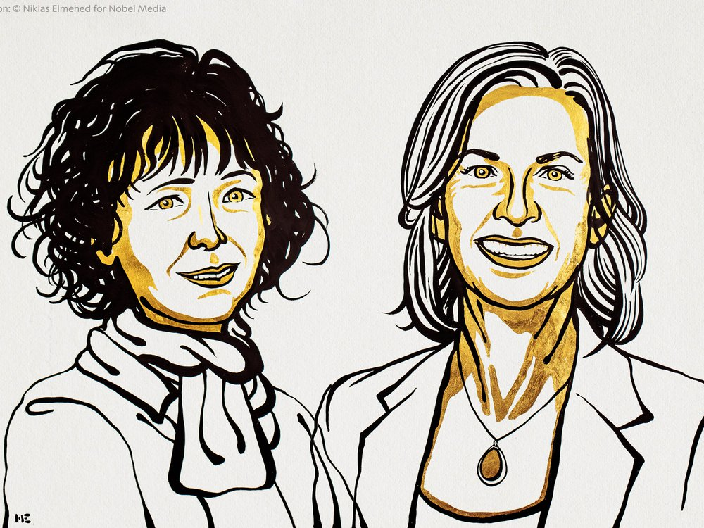 A black and yellow line drawing of the two Nobel laureates in chemistry. Emmanuelle Charpentier is on the left and Jennifer Doudna is on the right.