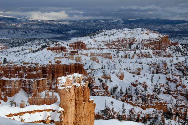 Winter wonderland  thumbnail