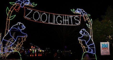 Nothing says Smithsonian cheer like ZooLights.