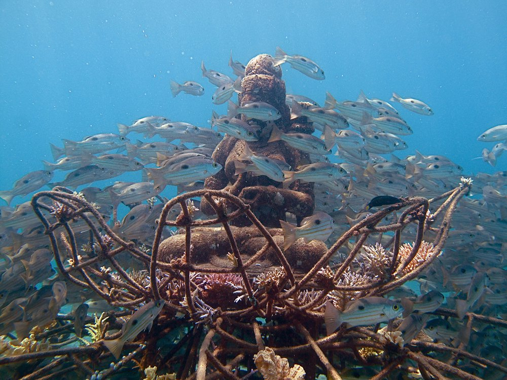 Coral Goddess and Snapper.JPG