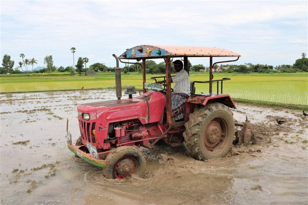 Tractor in a paddy farm. thumbnail