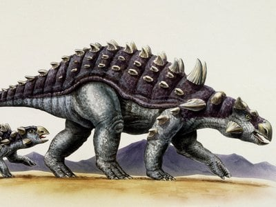 Illustration of an adult and juvenile ankylosaur.