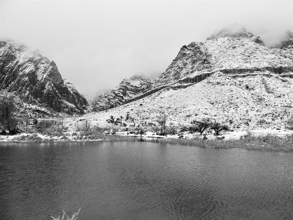 Winter in black and white Spring mountain ranch state park thumbnail