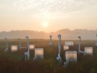 """""""We've been raising CO2 in this marsh for 30 years, but [elevated] CO2 comes with warming,"""" says Pat Megonigal, lead researcher of the new study in the Global Change Research Wetland at Smithsonian Environmental Research Center (SERC)."""
