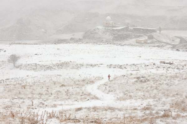 A Visitant In Snow thumbnail