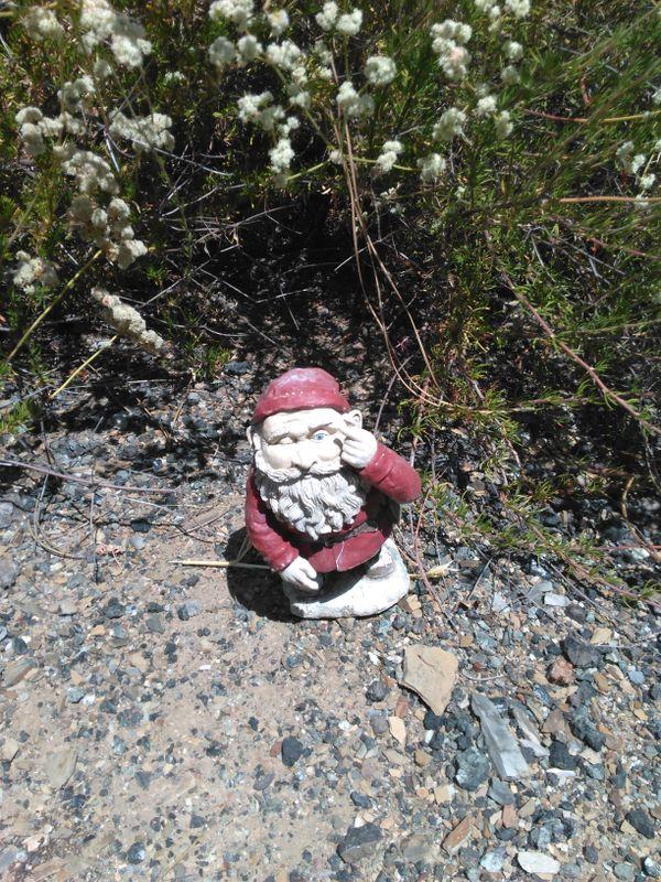 Traveling Gnome at New Melones Lake California thumbnail