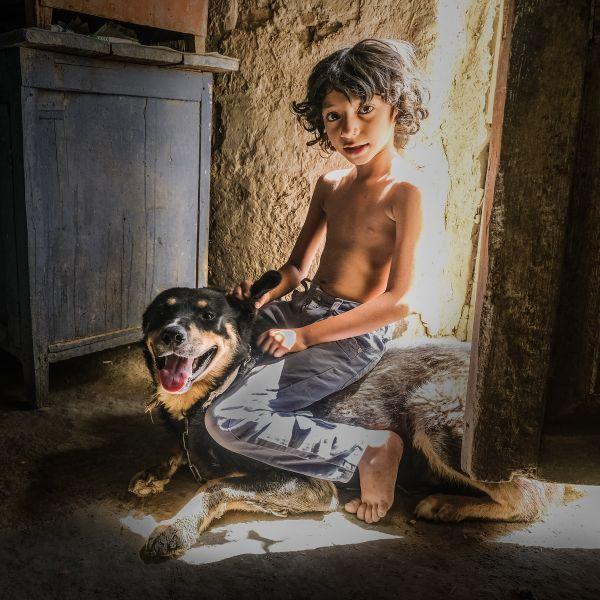 Boy And His Dog thumbnail