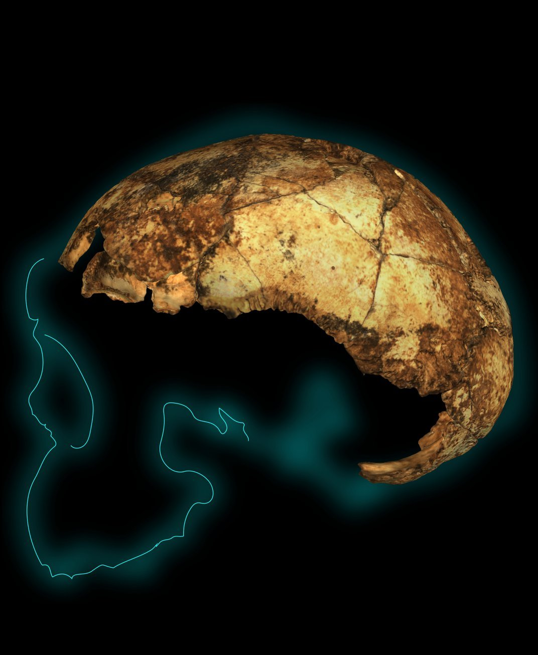 In Groundbreaking Find, Three Kinds of Early Humans Unearthed Living Together in South Africa