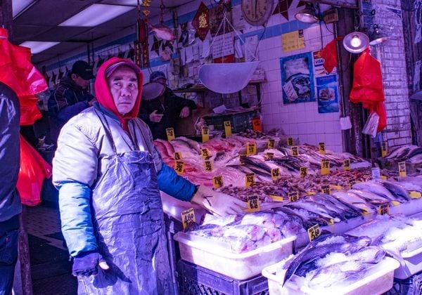 Fish Market in Chinatown thumbnail