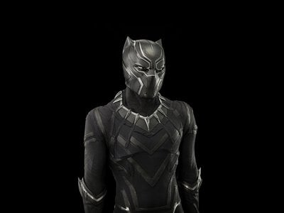 The costume worn by Chadwick Boseman's Black Panther during his Marvel Studios debut (2016's Captain America: Civil War), from the collection of the National Museum of African American History and Culture.