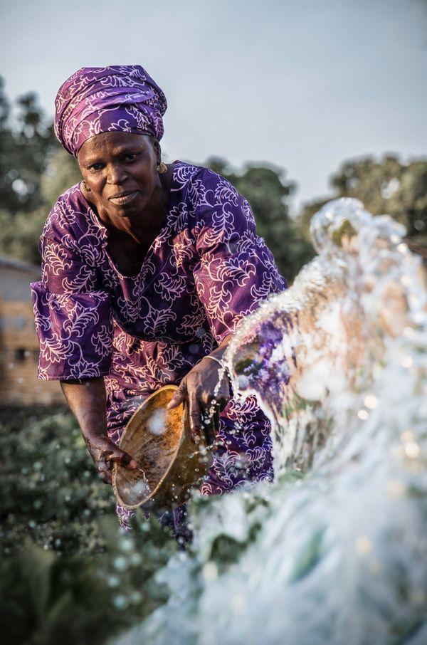 Watering crops, Senegal thumbnail