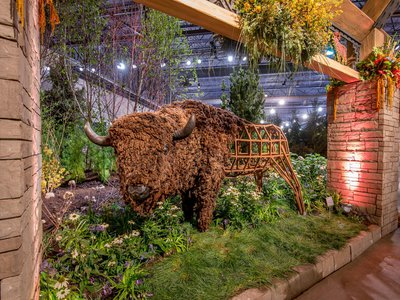 Bison sculpture by Emily White, Big Timber Lodge