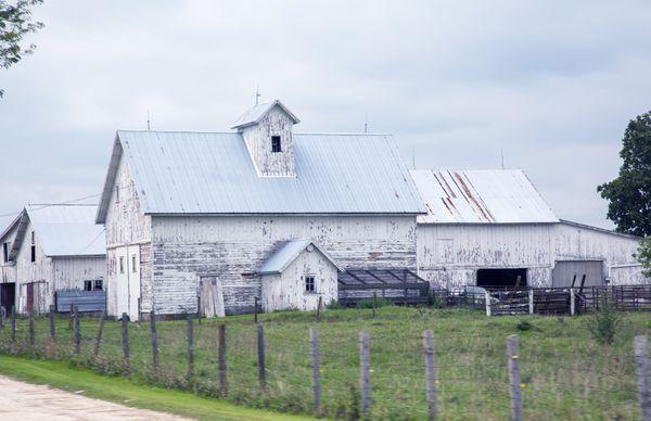 Blue and White Barn thumbnail