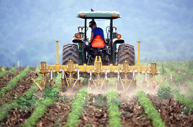 Person on a tractor tilling farm land