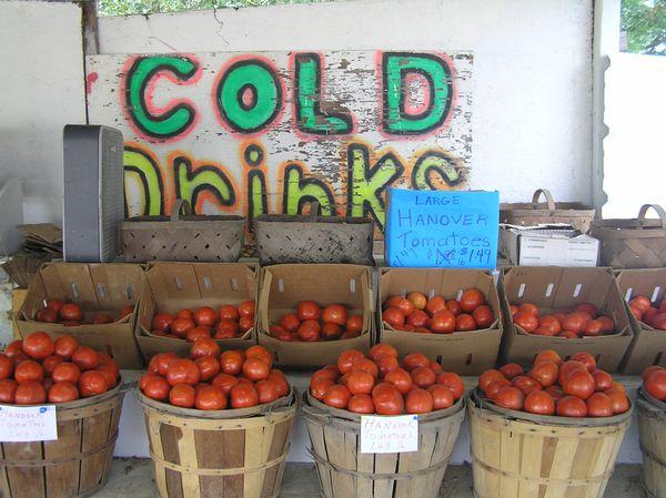 Hanover Tomatoes thumbnail
