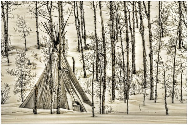 Sepia Toner BW image of Teepee in aspen forest in winter thumbnail