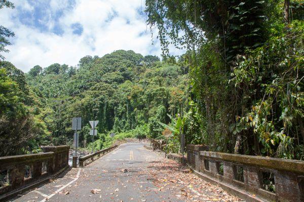 Homakua Coast, Hawaii #3 thumbnail