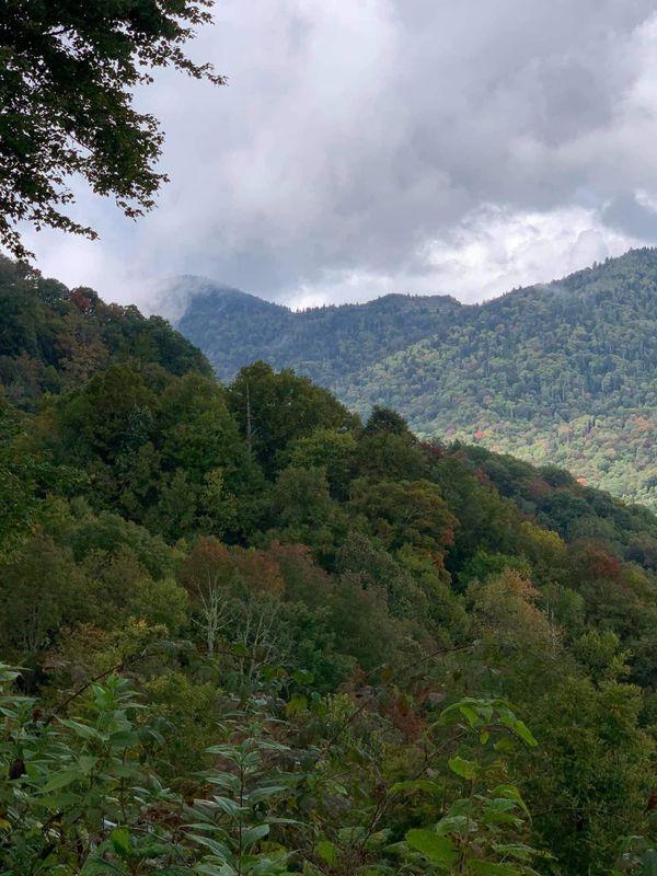 Great Smokey mountains (FALL) thumbnail