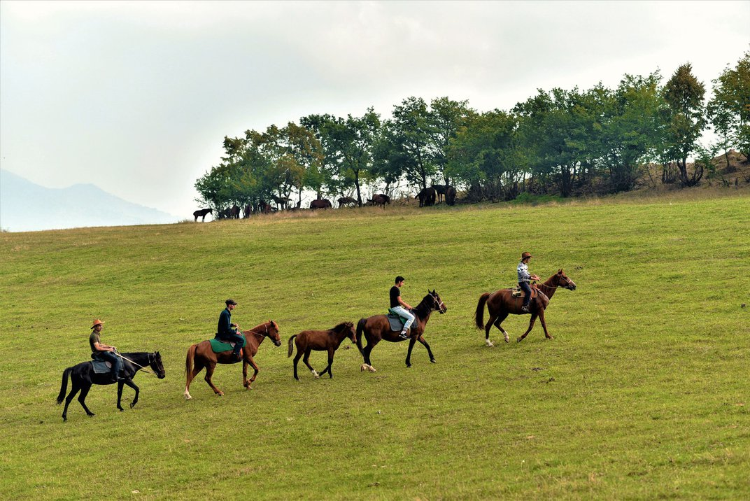 Four people on horseback ride in a single-file line through a field.