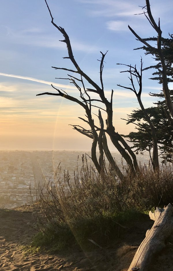 Silhouette at Twin Peaks thumbnail