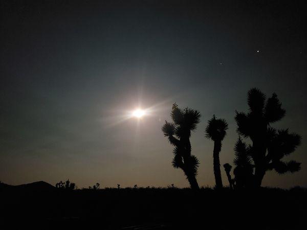 A full moon in White Hills, Arizona thumbnail