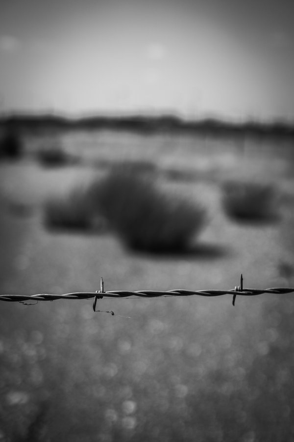 Barbed Wire around a field. thumbnail
