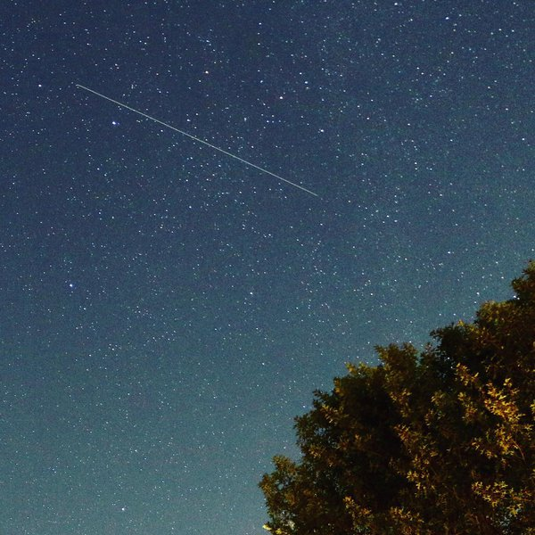 Perseid meteor thumbnail