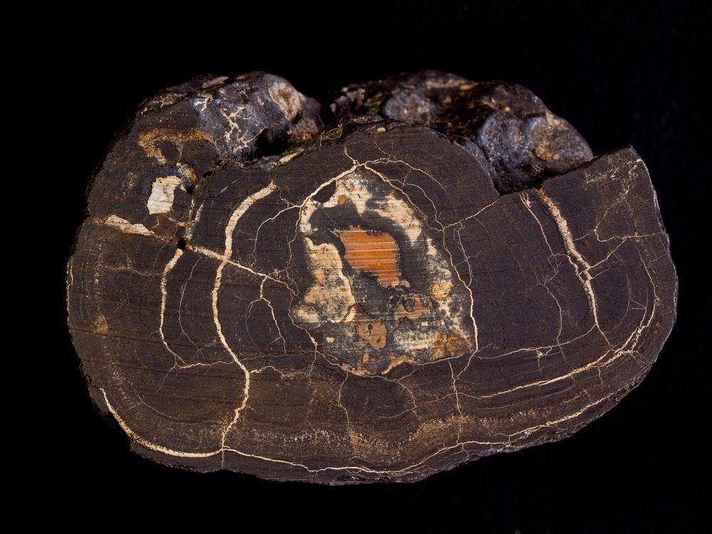 Manganese Nodule