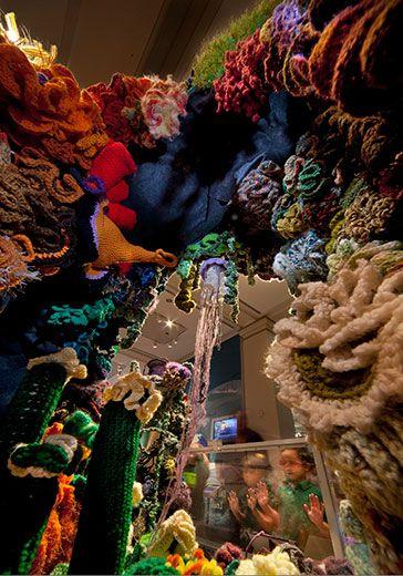 20110520110729coral-reef-crochet1.jpg