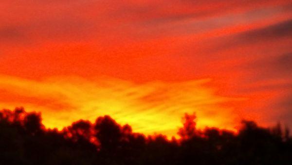 Sun Rising thumbnail