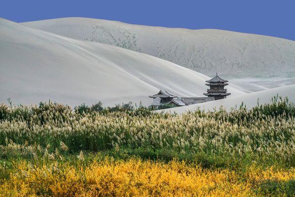 A popping-up elegant building in the desert thumbnail