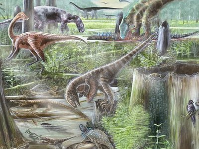 The Evolution of Terrestrial Ecosystems working group combines expertise from paleontologists and ecologists to improve our understanding of ancient and modern ecosystems