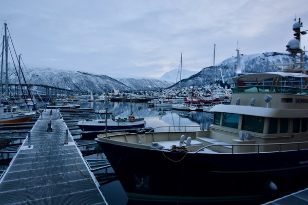 A serene harbor in Tromsø, Norway during Polar Night thumbnail